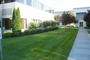 a corporate courtyard in good condition, thanks to our sprinkler repair in Fair Oaks CA